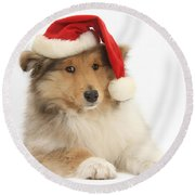 Christmas Collie Pup Round Beach Towel
