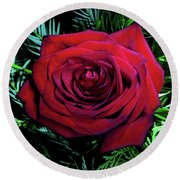 Christmas Rose Round Beach Towel by Mariola Bitner