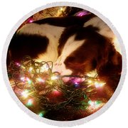 Christmas Spaniel Round Beach Towel