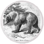 Cinnamon Bear Round Beach Towel