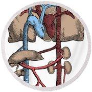 Circulatory System Round Beach Towel