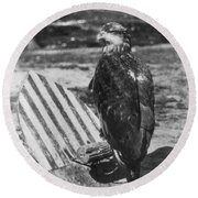 Civil War: Eagle Mascot Round Beach Towel