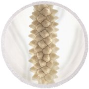 Clevelands Peace Lily Round Beach Towel