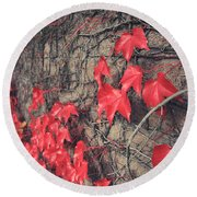 Clinging Round Beach Towel by Laurie Search