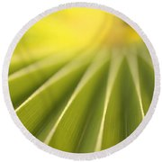 Close Up Of A Plant On The Island Round Beach Towel