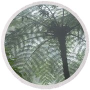 Cloud Forest Ceiling, Costa Rica Round Beach Towel