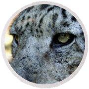 Clouded Leopard Face Round Beach Towel