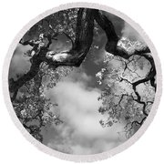 Cloudy Oak Round Beach Towel