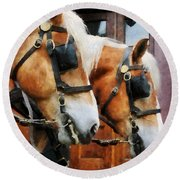 Clydesdale Closeup Round Beach Towel