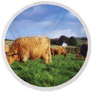 Co Antrim, Ireland Highland Cattle Round Beach Towel