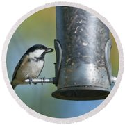 Coal Tit On Feeder Round Beach Towel