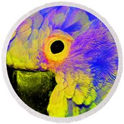 Cockatoo Of A Different Color Round Beach Towel