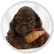 Cocker Spaniel Pup With Chew Treat Round Beach Towel
