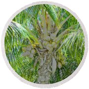 Coconut Palm Round Beach Towel