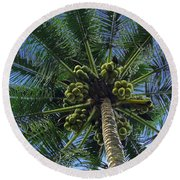 Coconut Palm Round Beach Towel