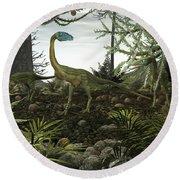 Coelophysis Dinosaurs Walk Amongst Round Beach Towel