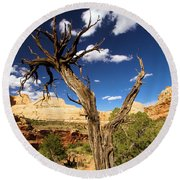 Cohab Canyon At Capitol Reef Round Beach Towel
