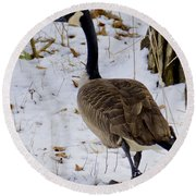 Cold Footed Goose On The Loose Round Beach Towel