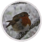 Cold Robin Round Beach Towel