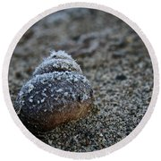 Cold Shell Round Beach Towel