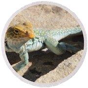 Collard Lizard Round Beach Towel