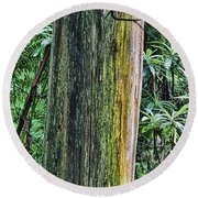 Color Of The Trees Round Beach Towel