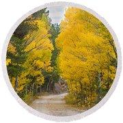 Colorado Autumn Aspen Road Boulder County Round Beach Towel
