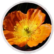 Colorado Flower Round Beach Towel
