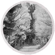 Colorado Rocky Mountain Aspen Road Portrait Bw Round Beach Towel