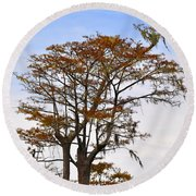 Colorful Cypress Round Beach Towel