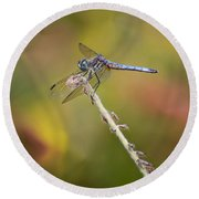 Colorful Dragonfly Dream Round Beach Towel