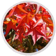 Colorful Fall Tree Red Leaves Art Prints Round Beach Towel