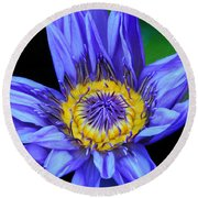 Colorful Lily Round Beach Towel