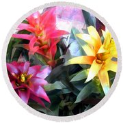 Colorful Mixed Bromeliads Round Beach Towel
