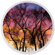 Colorful Silhouetted Trees 26 Round Beach Towel