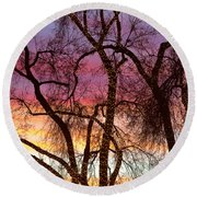 Colorful Silhouetted Trees 37 Round Beach Towel
