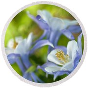 Columbine-1 Round Beach Towel