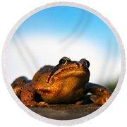 Common Frog Round Beach Towel