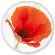 Common Poppy Flower Round Beach Towel