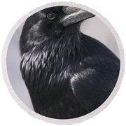 Common Raven, Jasper National Park Round Beach Towel