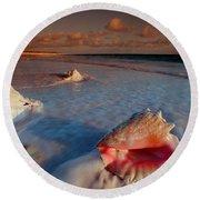 Conch Shell On Beach Round Beach Towel