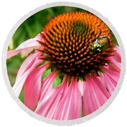 Cone Flower And Guest Round Beach Towel