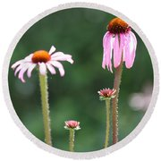 Coneflowers And Butterfly Round Beach Towel