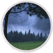 Coniferous Trees Early In The Morning Round Beach Towel