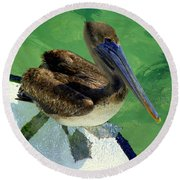 Cool Footed Pelican Round Beach Towel