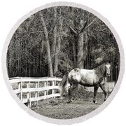 Coosaw - Outside The Fence Black And Wite Round Beach Towel