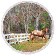 Coosaw - Outside The Fence Round Beach Towel
