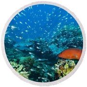Coral Reef In Thailand Round Beach Towel