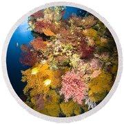 Coral Reef Seascape, Australia Round Beach Towel
