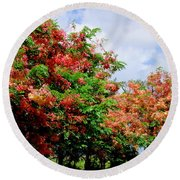 Coral Shower Trees Round Beach Towel
